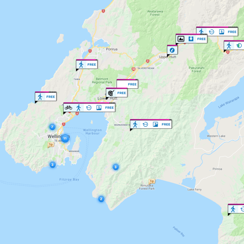 Web_activities_map_wellington_region_overview