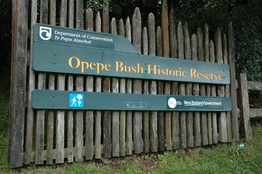 Historic Walk / Southern Walking Track - Opepe Bush Historic Reserve