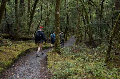 Routeburn Nature Walk