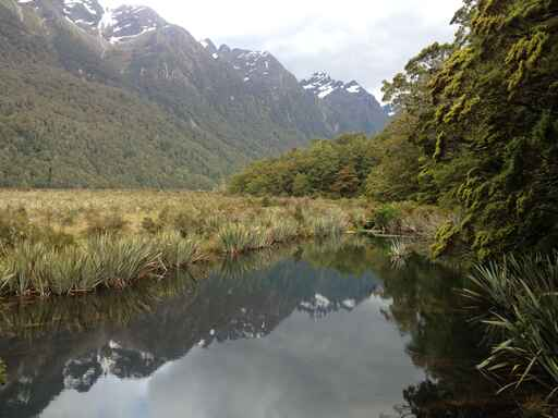 Mirror Lakes Walk - Milford Road, Fiordland National Park