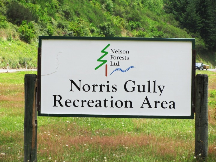 Norris Gully
