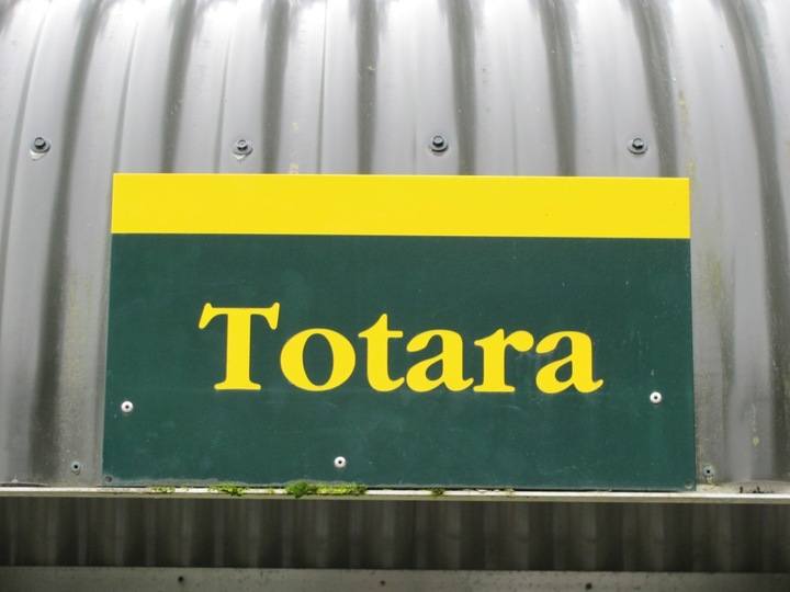 Totara Camping Ground