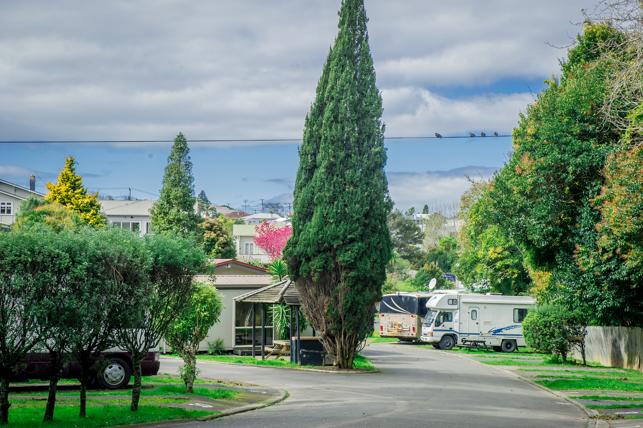 Remuera Motor Lodge Inner City Camping Ground Auckland