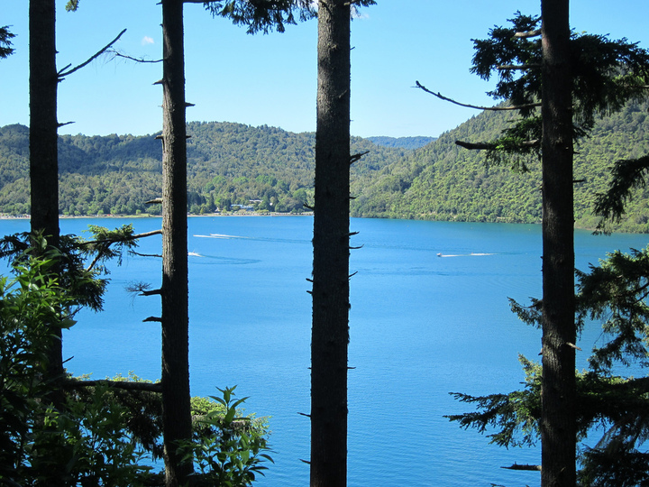 The Blue lake through the trees