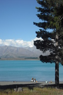 Pines Beach - Lake Tekapo