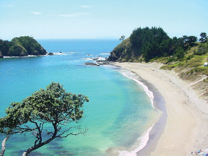 Otamure Camping Ground - Whananaki