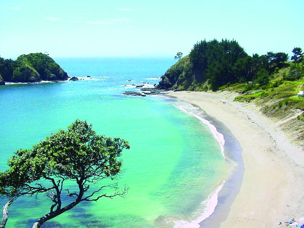 Treasure Island Camping Ground Whangarei