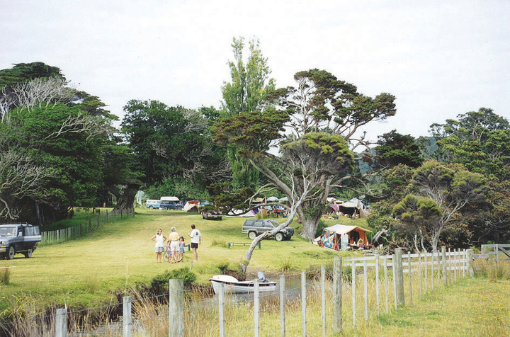 Harataonga Camping Ground