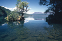 Lake Tarawera Outlet Camping Ground