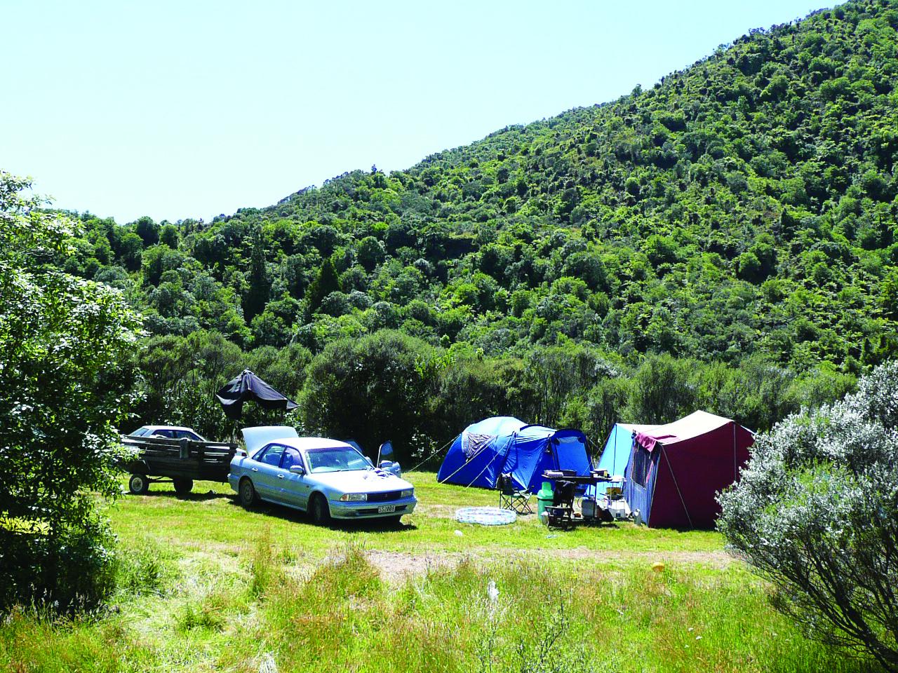 Otaki Forks Campsite - Otaki Forks area, Wellington Region, NZ - 12