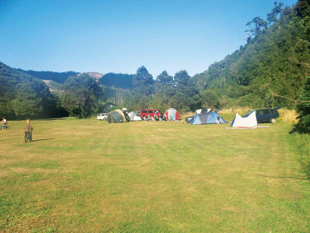 Catchpool Valley Campsite Rimutaka Forest Park Wellington Region Nz 13 Travel Reviews For