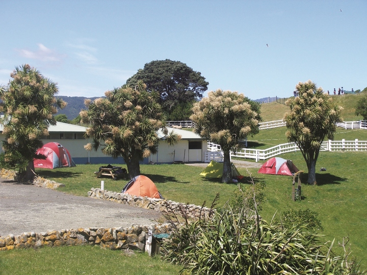 Matiu/ Somes Island Camping Ground