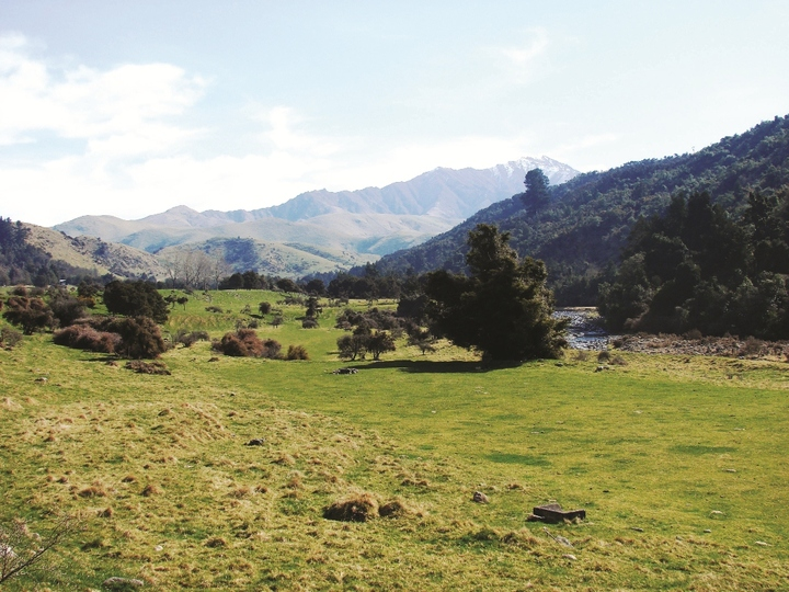 Waihi Gorge Camping Ground