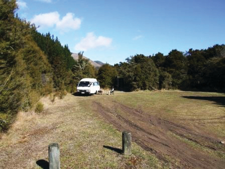Kowhai Point Scenic Reserve