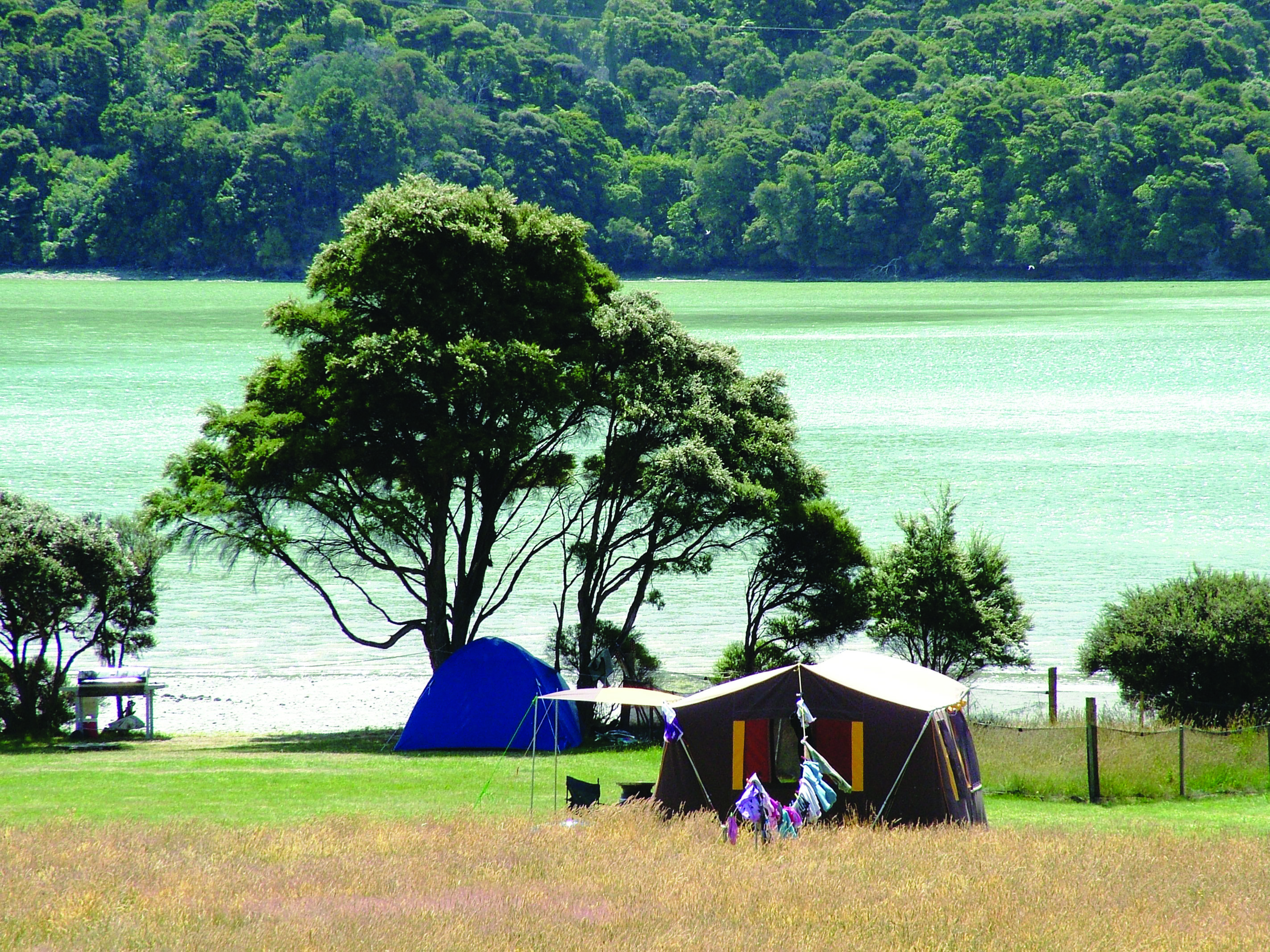 Kenepuru Head C&ing Ground & Camping in New Zealand - Camping Locations Traveller Reviews and ...
