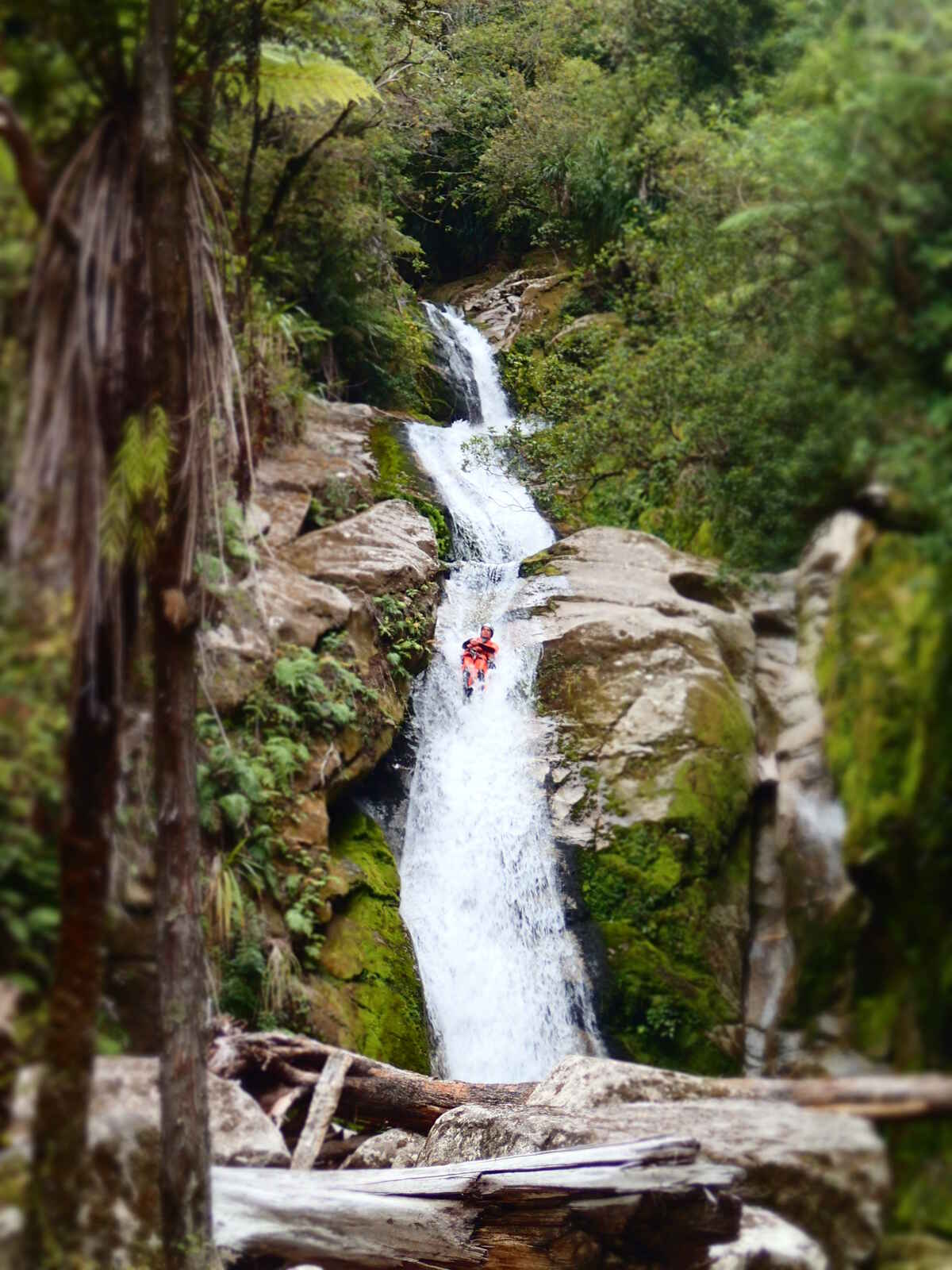 Mind blowing scenery! Canyoning New Zealand