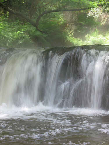 Kerosene Creek - Natural Hot Pools, Rotorua Region, NZ ...