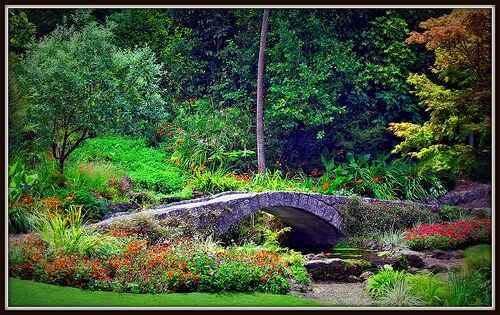 Napier Botanical Gardens, Hawkes Bay, NZ