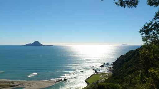 View from Kohi Point Walking Track above Whakatane