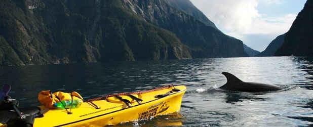 Roscos Milford Kayaks Fiordland Nz 105 Travel Reviews