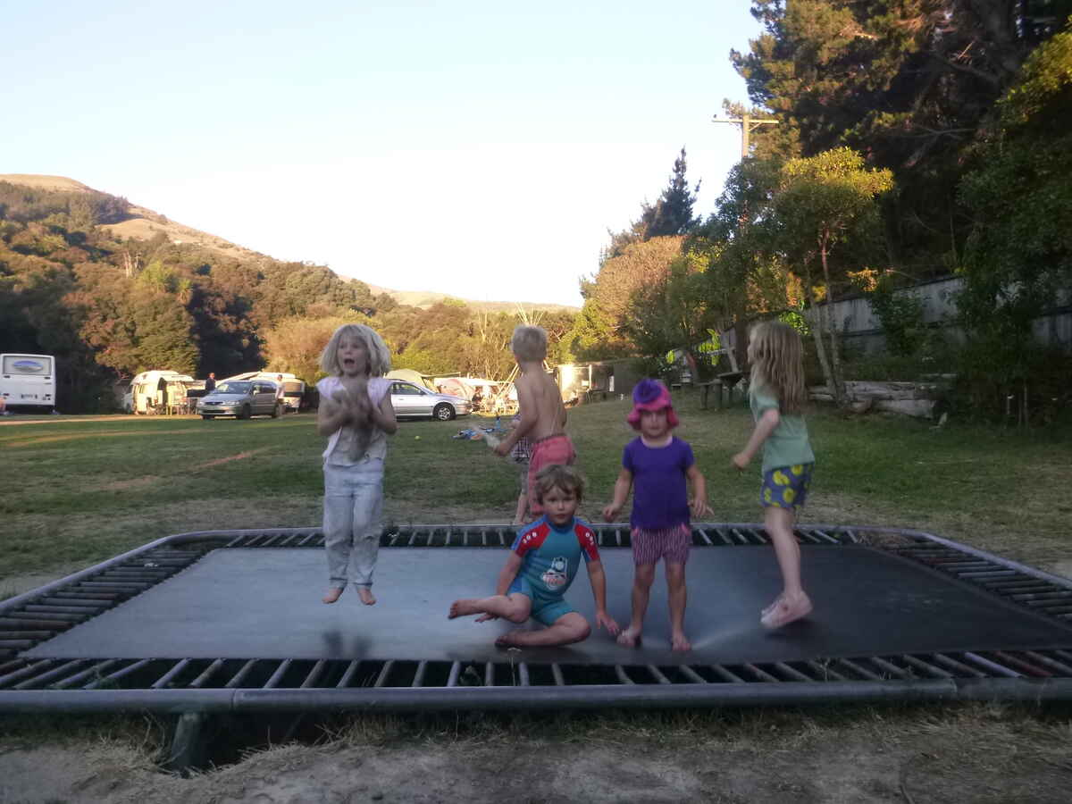 In ground trampoline. Bounce at your own risk.