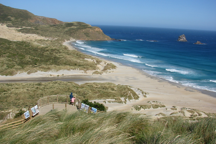 Sandfly Bay - Photo: Karen Connor