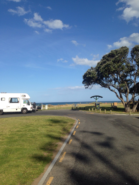 Dickey Flat Camping Kaimai Mamaku Forest Park Bay Of