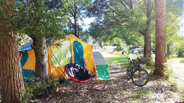 Spacious, private campsites