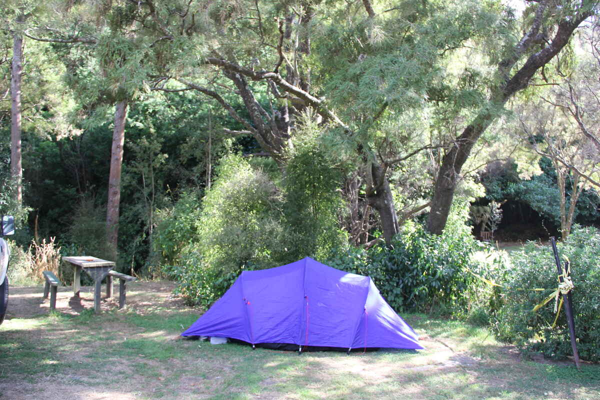 A tent in The Glade. No vehicle access.