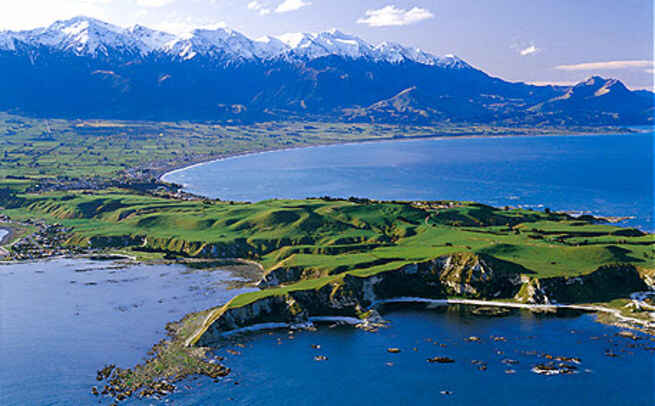 Image result for kaikoura
