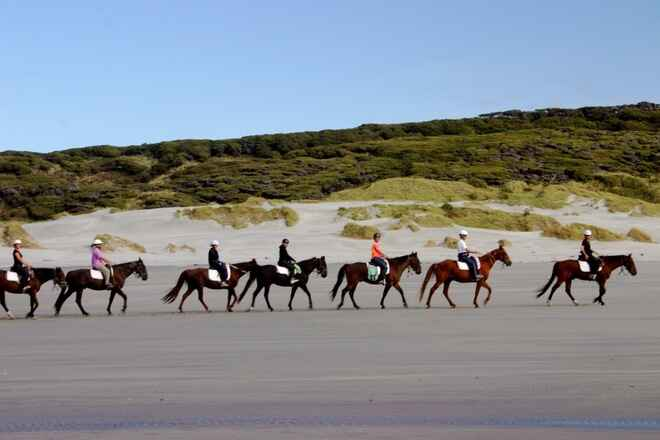 Horse trekkers on the beach