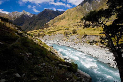 Up the Matukituki Valley to the Rob Roy Track