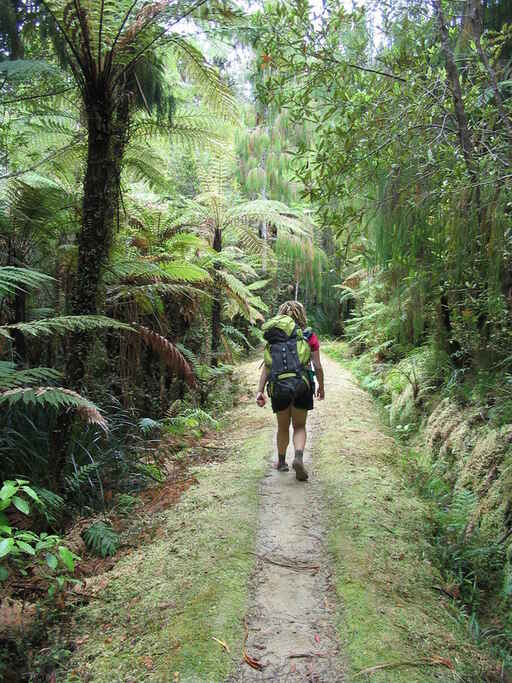 Walking the Heaphy Track