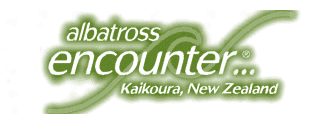 Albatross Encounter Kaikoura