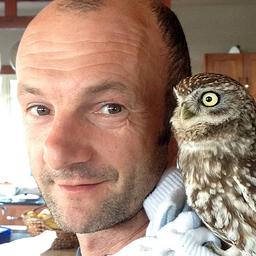 Marios Gavalas's avatar